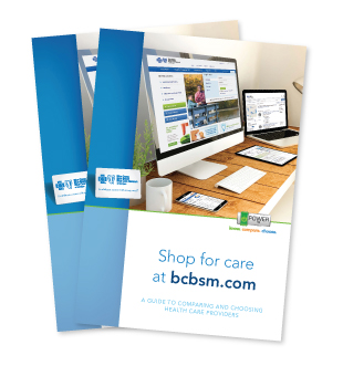 What is the BCBSM Health Assessment?